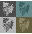 with grapes and leaves on a vector image vector image