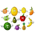 Cartoon funny garden and tropical fruits vector image vector image