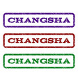 changsha watermark stamp vector image vector image