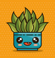 cute lovely kawaii house plants cartoons vector image