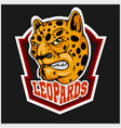 leopard head mascot for sport team vector image vector image