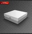 package white box design vector image vector image