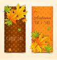 seasonal autumn sale vertical banners vector image vector image