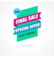 Final Sale banner poster background vector image