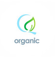 organic leaf logo vector image vector image