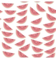 Seamless pattern with pink slices of watermelon vector image vector image