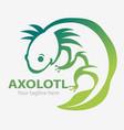 axolotl symbol vector image vector image