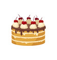 big layered cake with chocolate glaze whipped vector image