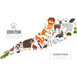 flat zoo animals concept vector image