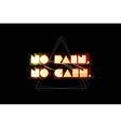 No pain no gain typography vector image