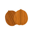 nuts walnut flat modern style vector image