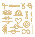set sea rope knots nautical marine cords elements vector image