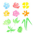 watercolor set of flowers and leaves vector image