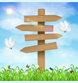 wooden direction board on grass sky background vector image