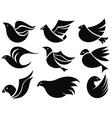 Bird labels vector image