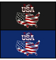 100 percent usa - american vector image vector image
