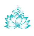 abstract design lilly lotus flower vector image