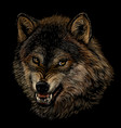 angry wolf graphic color portrait a wolf vector image vector image