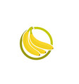 bananan fruits template logo vector image
