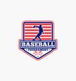 baseball logo badge-9 vector image vector image