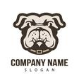 bulldog design vector image vector image