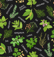 Herbs and spices seamless pattern on black vector image vector image