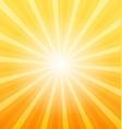 Orange sunray background vector image vector image