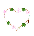 Pink Bauhinia Purpurea Flowers in A Heart Shape vector image vector image