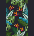 seamless pattern with bird paradise tropical vector image