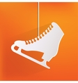 Skate web icon vector image vector image