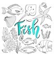 sketches fish set Hand drawn marine vector image vector image