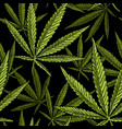 seamless pattern with marijuana leaf vintage vector image