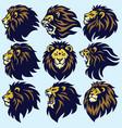 lion head sport logo mascot set premium collection vector image vector image