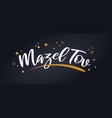 mazel tov banner with glitter decoration vector image vector image
