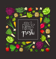 square frame root vegetables and greens vector image