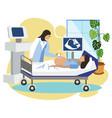 the medicine pregnant woman do ultrasound the vector image vector image