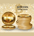 realistic bitcoin cryptocurrency coins vector image