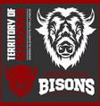 buffalo head animal symbol great for badge label vector image vector image
