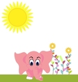 elephant summer vector image vector image