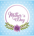 mothers day card invitation celebration floral vector image