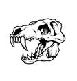 t rex skull vector image vector image