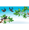 Three birds at the forest vector image vector image