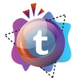 tumblt bubble and colorful graphics icon on a vector image vector image
