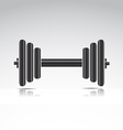 dumbbell weights vector image