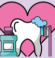 brusing tooth mouthwash love dentistry vector image vector image