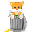 cat looking out trash can vector image