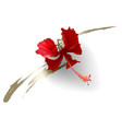 tropical red hibiscus flower on white background vector image