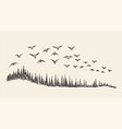 a flock of birds drawn sketch vector image vector image