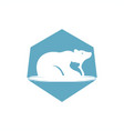 bear family logo vector image