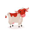cute funny brown and white spotted milk cow vector image